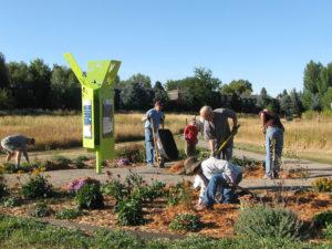 Photo of volunteers maintaining garden